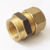 Brass MDPE Alkathene Female Iron Coupling 25mm x 3/4 - 18412500